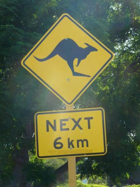 australien_028