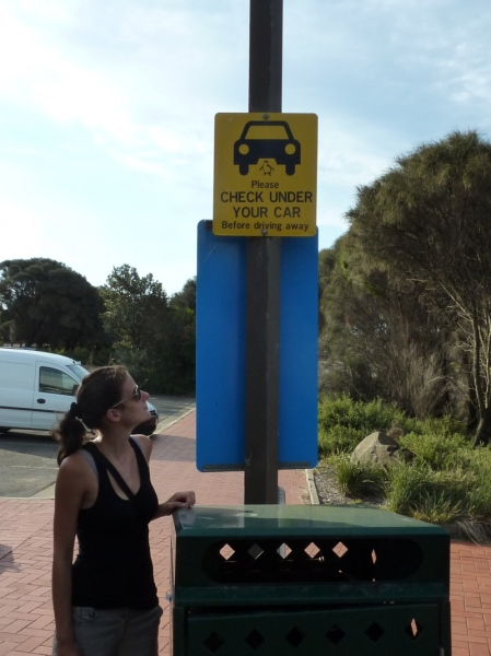 australien_361