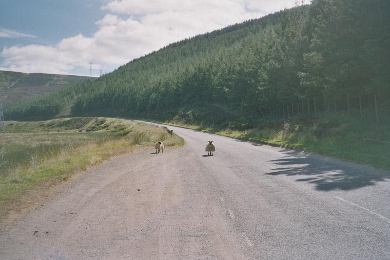 Schottland_B24