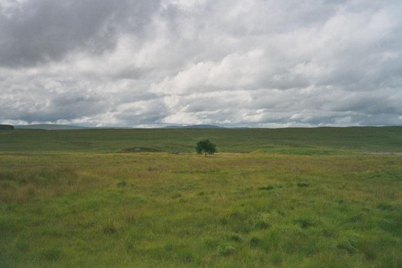 Schottland_C24