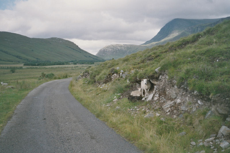 Schottland_D08
