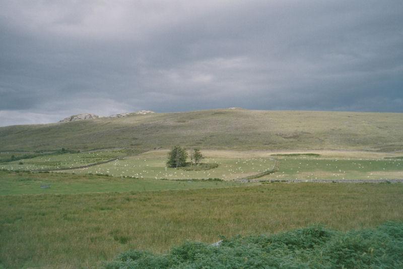 Schottland_D36