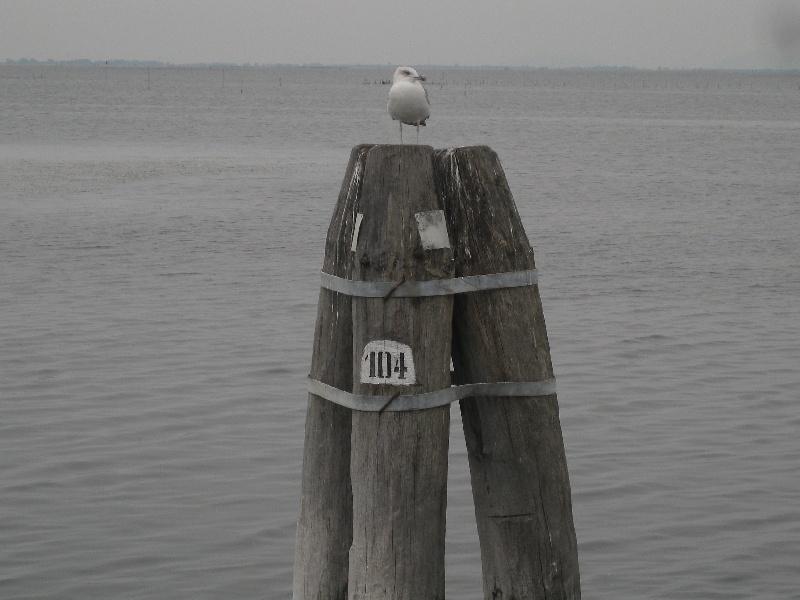 Venezia190